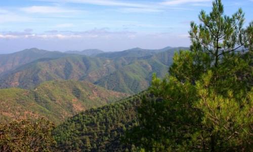 Zdjecie CYPR / góry Troodos / gdzieś po drodze / W górach
