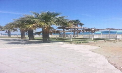 Zdjecie CYPR / Larnaca / Larnaka / Larnaka