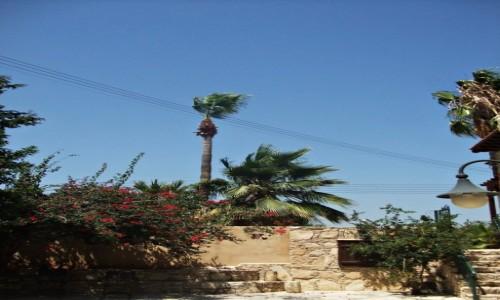 Zdjęcie CYPR / Limassol / Limassol / Limassol