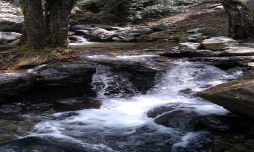 Zdjecie CYPR / Góry Troodos / . / W drodze do wodospadu