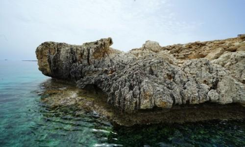 Zdjecie CYPR / Larnaka / Ayia Napa / Nad błękitną laguną