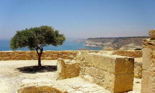 Zdjęcie CYPR / południowe wybrzeże / Kourion / Drzewko z Kourion spoglądające na Akrotin