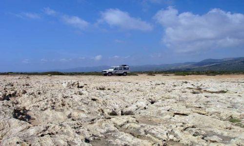 Zdjęcie CYPR / brak / W drodze z Paphos do Fontana Amorosa / Samotny jeep