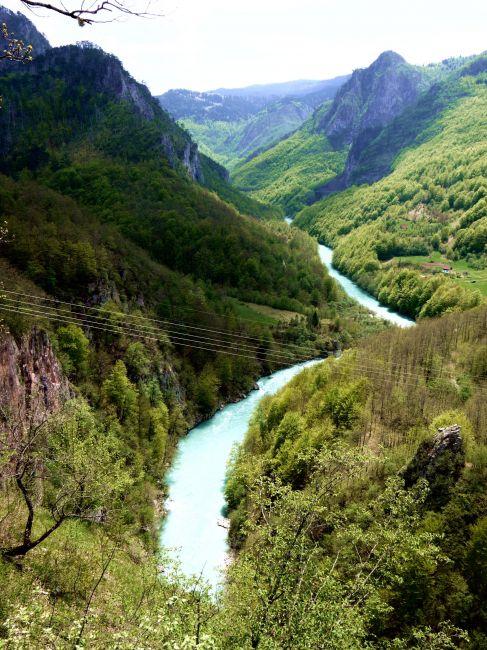 Zdjęcia: Kanion rzeki Tary, Majowa Czarnogóra, CZARNOGÓRA