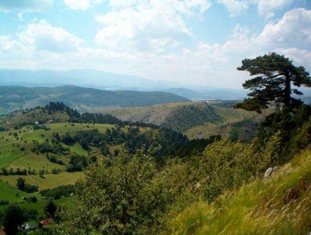Zdjęcia: Zaraz za granicą serbsko-czarnogórską., Prawie jak Shire z Władcy Pierścieni, CZARNOGÓRA