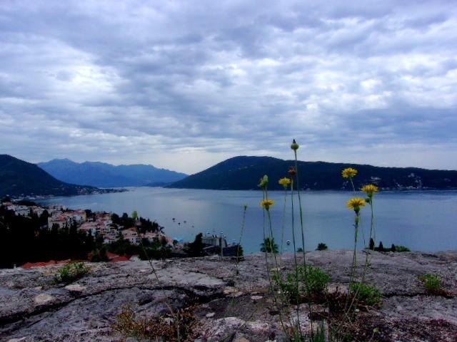 Zdjęcia: Herceg Novi, Boka Kotorska, Zatoka Kotorska w pochmurny dzień, CZARNOGÓRA