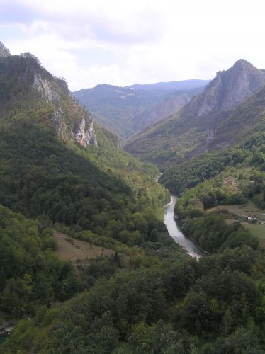 Zdjęcia: most, kanion Tary, widok z mostu, CZARNOGÓRA