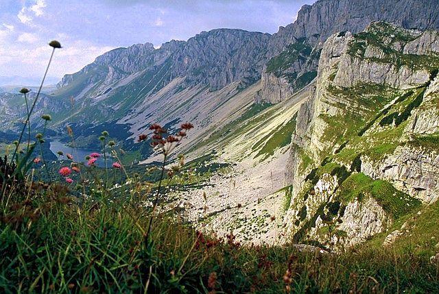 Zdjęcia: Durmitor, przełęcz Semar, Góry Dynarskie, Przełęcz w rozkwicie, CZARNOGÓRA