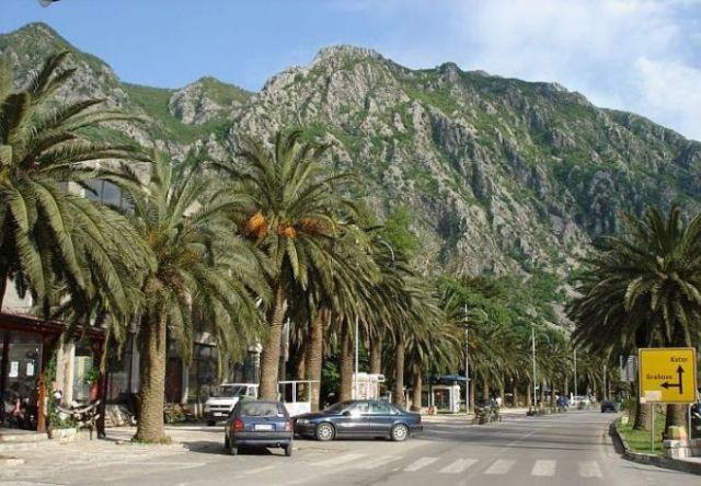 Zdjęcia: Herceg-Novi, Herceg-Novi, Jedziemy do Kotoru, CZARNOGÓRA