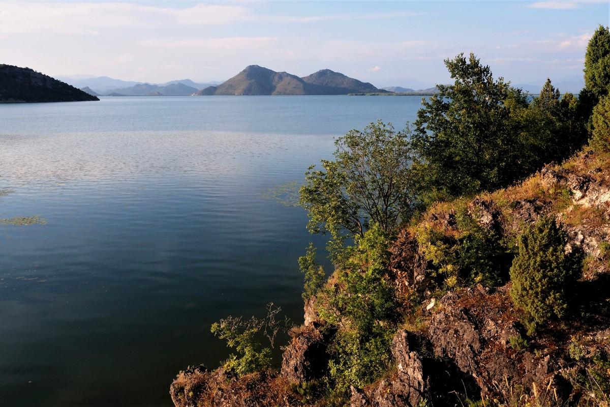 Zdjęcia: Godinje, na pograniczu Czarnogóry i Albanii, Jezioro Szkoderskie..., CZARNOGÓRA