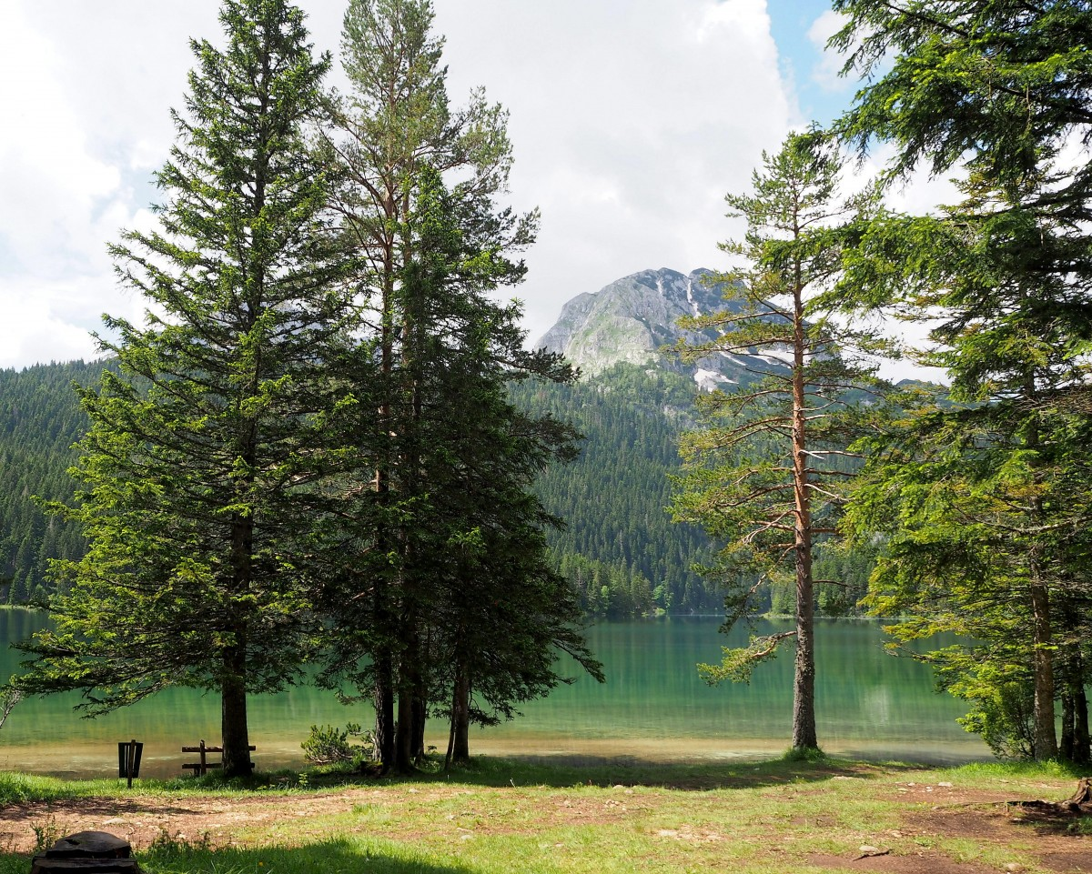 Zdjęcia: Crno Jezero, Durmitor, jak kryształ..., CZARNOGÓRA