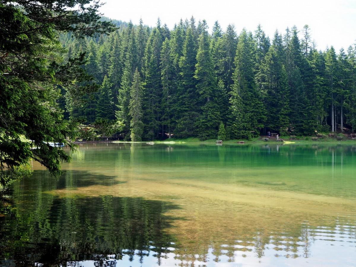 Zdjęcia: Crno Jezero, Durmitor, mówią, że kałuża..., CZARNOGÓRA
