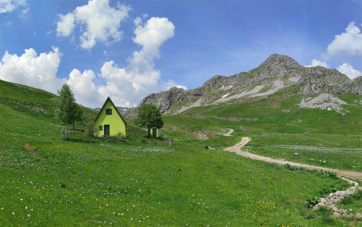 Zdjęcia: Moračke planine, Kolasin, Moje tysięczne zdjęcie na Globtroter, CZARNOGÓRA