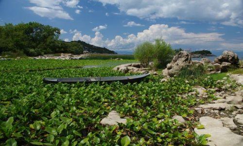 Zdjecie CZARNOGÓRA / - / jezioro Shkoder / nad jeziorem Shkoder