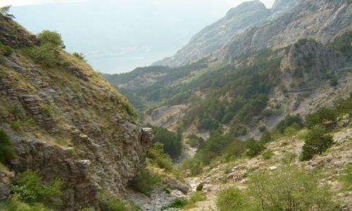Zdjecie CZARNOGÓRA / brak / okolice Kotoru / Montenegro