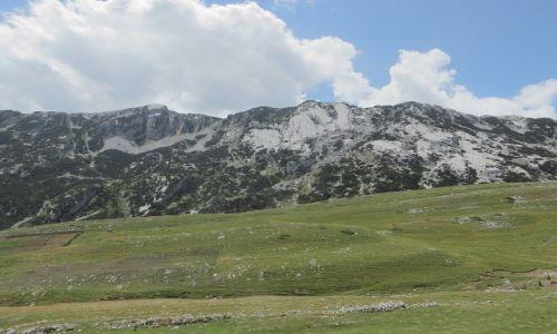 Zdjęcie CZARNOGÓRA / północna Czarnogóra / P.N. Durmitor / obrazki z Durmitoru