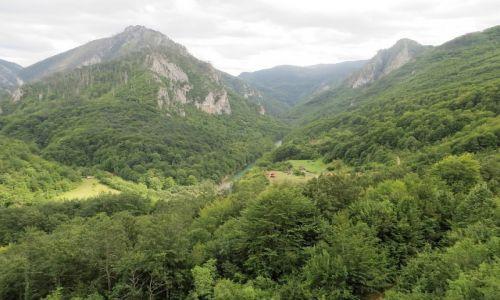 Zdjęcie CZARNOGÓRA / północna Czarnogóra / P.N. Durmitor / przełom Tary