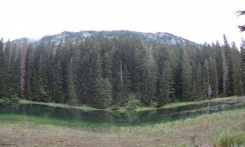 Zdjęcie CZARNOGÓRA / P.N. Durmitor / okolice Żabljaka / jezioro Żmijne