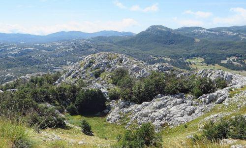 Zdjęcie CZARNOGÓRA / północna Czarnogóra / P.N. Lovcen / Park Narodowy Lovcen
