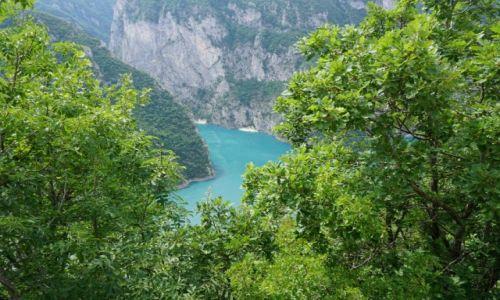 Zdjęcie CZARNOGÓRA / Czarnogóra / Pluzine / Czarnogora Pivsko Jezero