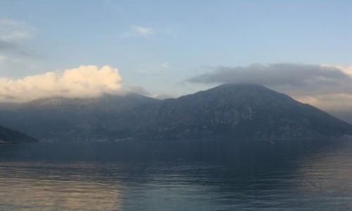 Zdjecie CZARNOG�RA / - / Kotor / Zatoka Kotorska