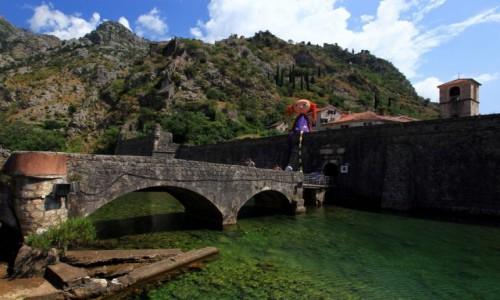 Zdjęcie CZARNOGÓRA / Kotor / Szkudra  / Na kamiennym moście