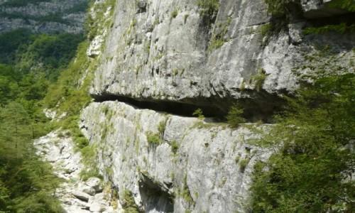 Zdjecie CZARNOG�RA / region Kolasin / kanion rzeki Mrvica / Kanion Mrtvicy