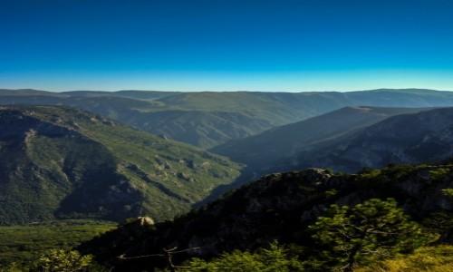 Zdjecie CZARNOGÓRA / Durmitor / Curevac / Kanion rzeki Ta