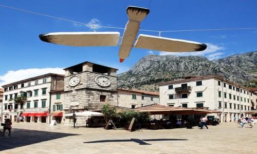 Zdjęcie CZARNOGÓRA / Kotor / Wieża zegarowa / Wielki ptak