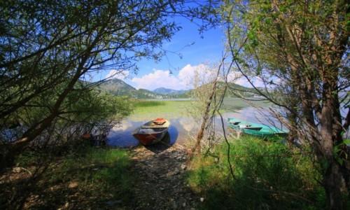 CZARNOGÓRA / Półwysep Bałkański /     / Jezioro Szkoderskie