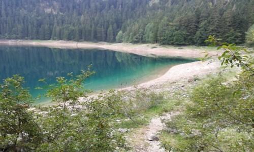 Zdjecie CZARNOGÓRA / Durmitor / Jezioro Czarne / Wokół Jeziora Czarnego