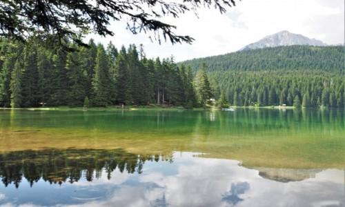 Zdjecie CZARNOGÓRA / Durmitor / Zabljak / Crno jezero...