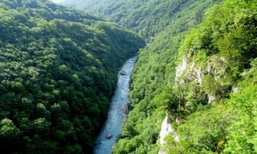 Zdjecie CZARNOGÓRA / Park Narodowy Durmitor / kanion rzeki Tara / Kanion Tary...