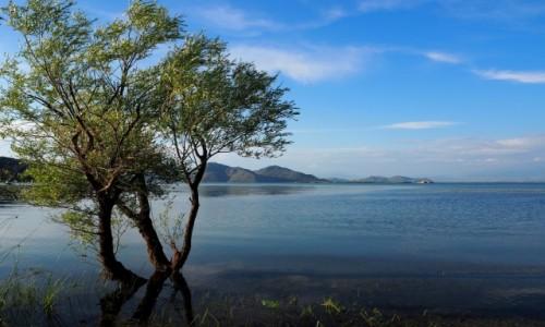 CZARNOGÓRA / na pograniczu Czarnogóry i Albanii / Nacionalni Park Skadarsko Jezero.  / wielkie, jak morze...