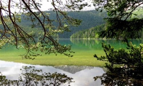 Zdjecie CZARNOGÓRA / Góry Dynarskie / Zabljak, Crno Jezero / Savin Kuk - w lustrze...