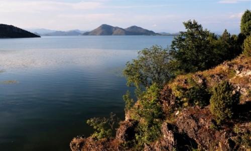 Zdjecie CZARNOGÓRA / na pograniczu Czarnogóry i Albanii / Godinje / Jezioro Szkoderskie...