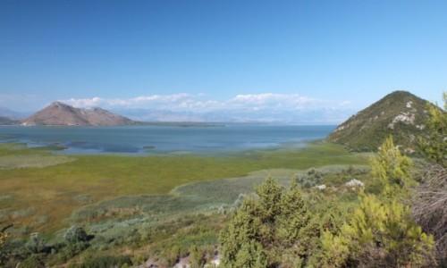 Zdjecie CZARNOGÓRA / Skadar Lake National Park / Godinje / Jezioro Szkoderskie