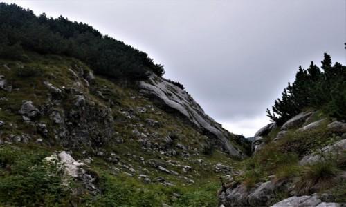 Zdjecie CZARNOGÓRA / Góry Dynarskie / Durmitor / Durmitor