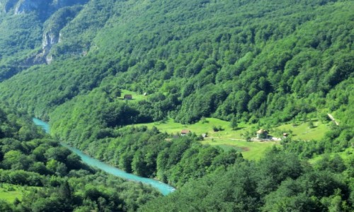 Zdjecie CZARNOGÓRA / - / Park Narodowy Durmitor / kanion Tary...