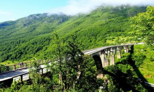 Zdjecie CZARNOGÓRA / - / Park Narodowy Durmitor, most nad Tarą / jak ptasie skrzydło...
