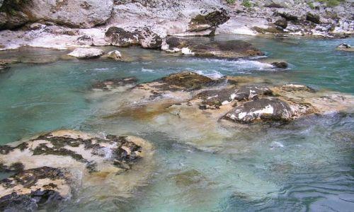 Zdjecie CZARNOGÓRA / kanion Tary / Tara / Woda z rzeki zdatna do picia!