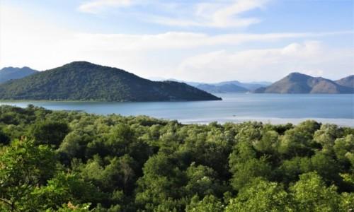 Zdjecie CZARNOGÓRA / - / Nacionalni Park Skadarsko Jezero / między Albanią, a Czarnogórą...