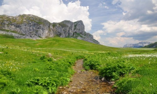 Zdjęcie CZARNOGÓRA / Kolasin / Morača / Krajobrazy Czarnogóry