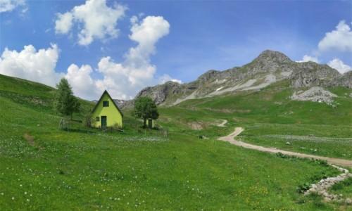 CZARNOGÓRA / Kolasin / Moračke planine / Moje tysięczne zdjęcie na Globtroter