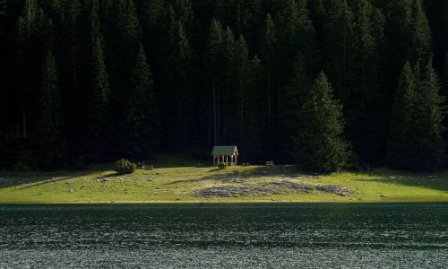 Zdjęcie CZARNOGÓRA / Masyw Durmitor / Zabljak / nad Jeziorem Crnym- jak na scenie