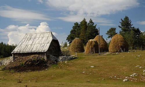 Zdjęcie CZARNOGÓRA / Masyw Durmitor / okolice Zabljaka / sielska wieś w górach