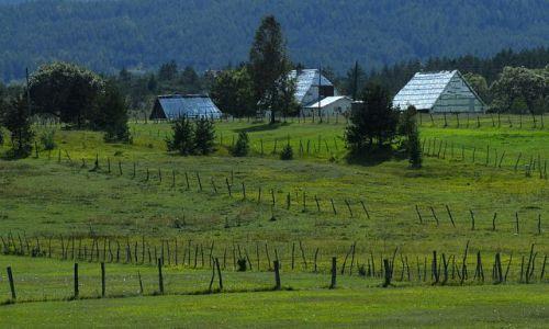 Zdjęcie CZARNOGÓRA / Masyw Durmitor / okolice Zabljaka / krajobraz z kreseczkami