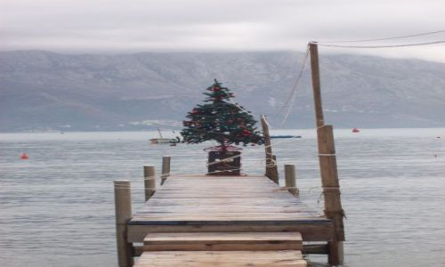 Zdjecie CZARNOGÓRA / Czarnogóra / Budva / świątecznie