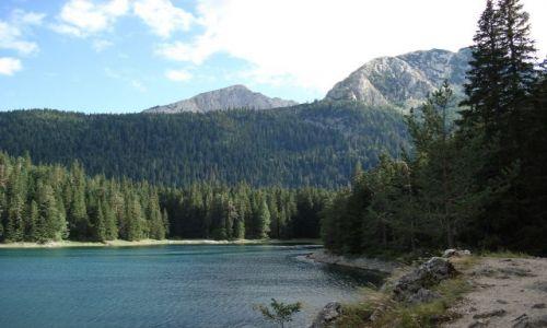 Zdjecie CZARNOGÓRA / Durmitor / Zabljak - Crno Jezero / Jezioro Czarne - Durmitor