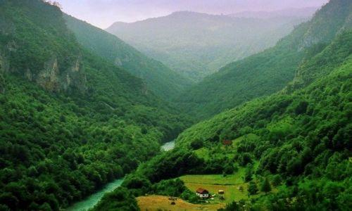 Zdjecie CZARNOGÓRA / Park Narodowy Durmitor / Durdevica Tara / Rzeka Tara
